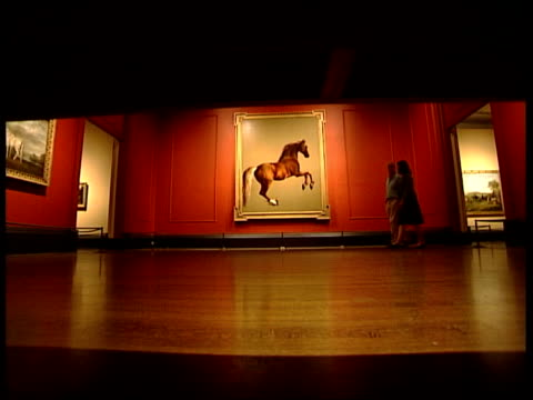 george stubbs exhibition; england: london: national gallery: int music overlay: unidentified classical music: cms detail of horse painting... - multiple exposure stock videos & royalty-free footage