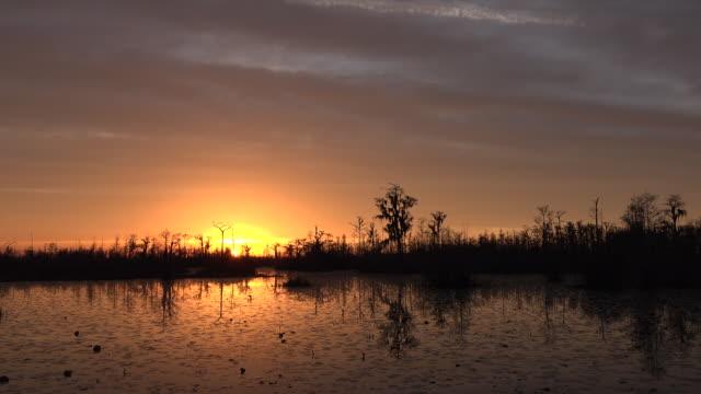 georgia okefenokee after sun sinks below horizon zoom - okefenokee national wildlife refuge stock videos and b-roll footage