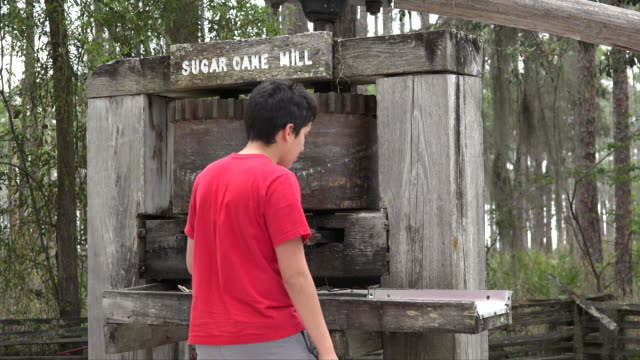 georgia okefenokee boy at sugar mill.mov - one teenage boy only stock videos & royalty-free footage