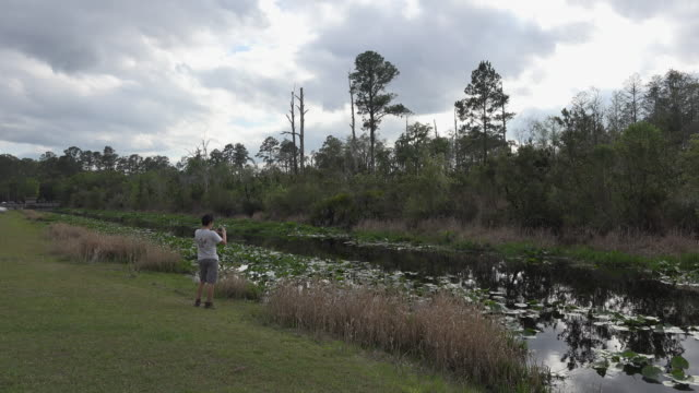 georgia okefenokee boy takes a picture - okefenokee national wildlife refuge stock videos and b-roll footage