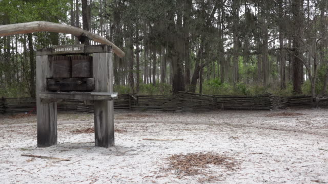 georgia okefenokee boy turning sugar mill.mov - okefenokee national wildlife refuge stock videos and b-roll footage