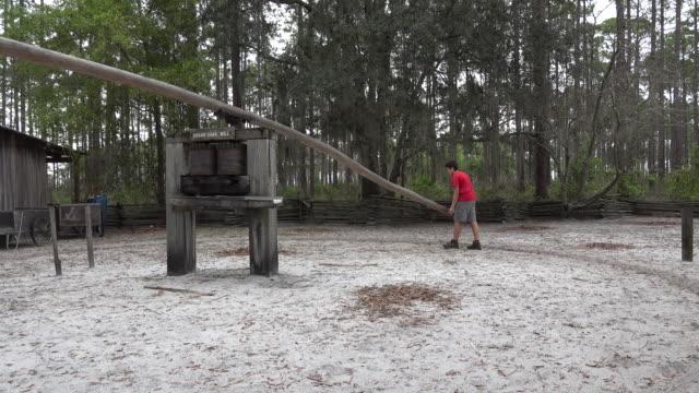 georgia okefenokee boy turns sugar mill.mov - オケフェノキー国立野生生物保護区点の映像素材/bロール