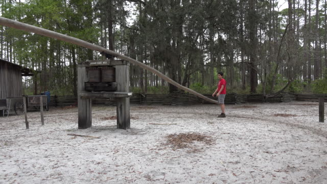 georgia okefenokee boy turns sugar mill.mov - one teenage boy only stock videos & royalty-free footage