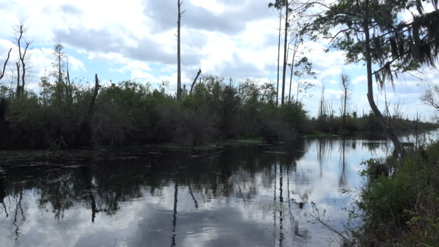 georgia okefenokee clouds over swampy water - okefenokee national wildlife refuge stock videos and b-roll footage