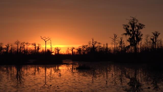 georgia okefenokee dramatic setting sun and orange sky.mov - okefenokee national wildlife refuge stock videos and b-roll footage