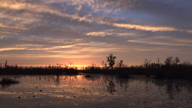 georgia okefenokee glorious after sunset sky - okefenokee national wildlife refuge stock videos and b-roll footage