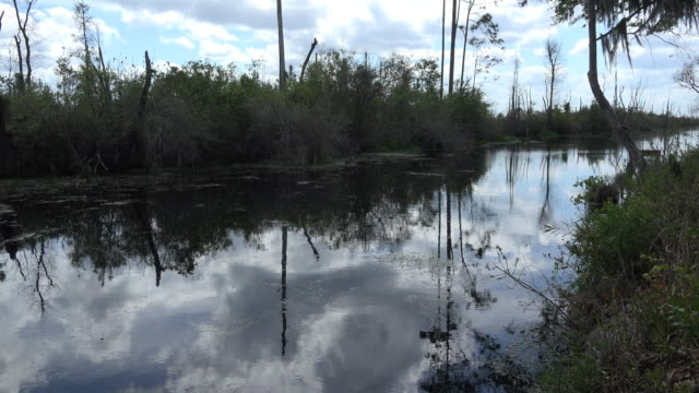 georgia okefenokee reflections in clouds - okefenokee national wildlife refuge stock videos and b-roll footage