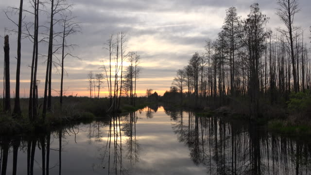 georgia okefenokee sun shines through clouds over swamp.mov - okefenokee national wildlife refuge stock videos and b-roll footage