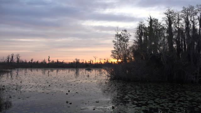 georgia okefenokee sun sinks lower - okefenokee national wildlife refuge stock videos and b-roll footage