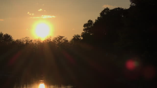 georgia okefenokee sunset with sun rays zoom in - okefenokee national wildlife refuge stock videos and b-roll footage