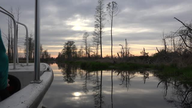 georgia okefenokee view with boat prow - オケフェノキー国立野生生物保護区点の映像素材/bロール