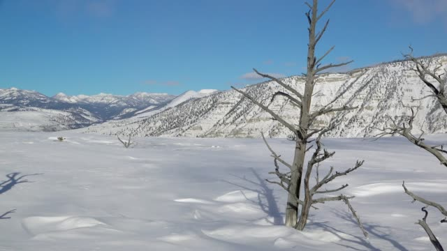 geothermal features in yellowstone in winter - yellowstone nationalpark stock-videos und b-roll-filmmaterial