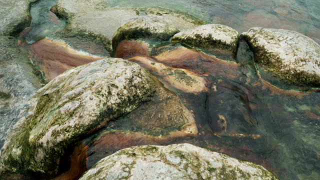 geothermal water from the hotspring - geyser video stock e b–roll