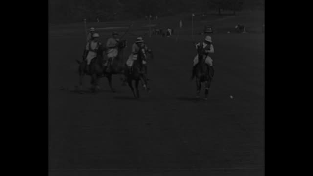 gerald balding inspects horses / pan british team as they stand by their horses: aiden roarke, balding, robert skene and eric tyrell- martin / polo... - balding stock videos & royalty-free footage