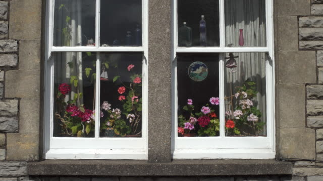 geraniums in a windows in the the street at glastonbury, somerset, uk - window frame stock videos and b-roll footage