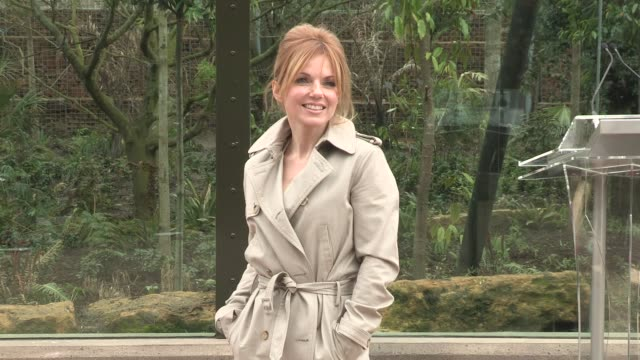 geri halliwell at tiger territory royal opening at london zoo on march 20 2013 in london england - geri horner stock videos & royalty-free footage