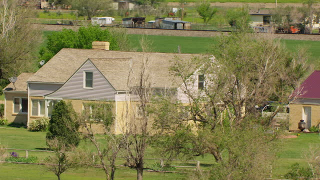 WS AERIAL ZO German Shepherd dog walking at Cutter Homestead surrounded by field / Holcomb, Kansas, United States