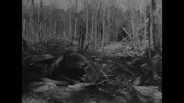 vidéos et rushes de german v-1 flying bomb in flight overhead / mls launch site among the trees in pas de calais, france / mls launch rails under fallen tree limbs /... - bombardement