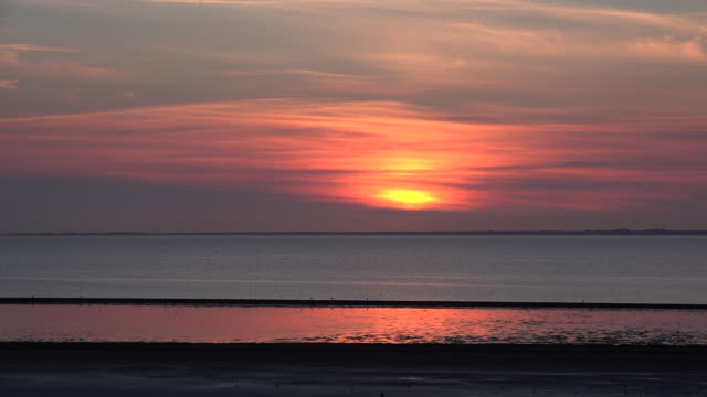 germany setting sun view on wadden sea with birds - gezeiten stock-videos und b-roll-filmmaterial