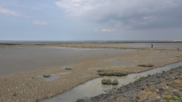 germany wadden sea at low tide view - low tide stock videos & royalty-free footage