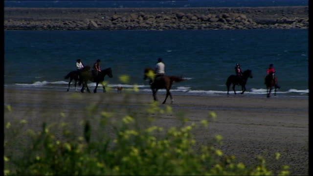 gerry adams arrested over 1972 murder 1572012 / t15071216 county louth shelling hill ext general view shelling hill beach with people riding horses... - t in the park stock-videos und b-roll-filmmaterial