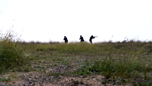 gesture of of fully Equipped and Armed Soldiers are patrolling among Meadow