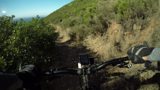 Get a grip on life, go mountain biking