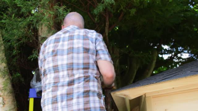 vidéos et rushes de pour ce qui est de mon projet de retraite - échelle