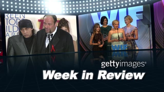 gettyimages week in review 06/20/13 on june 20, 2013 in hollywood, california - スティーブン ヴァン ザント点の映像素材/bロール