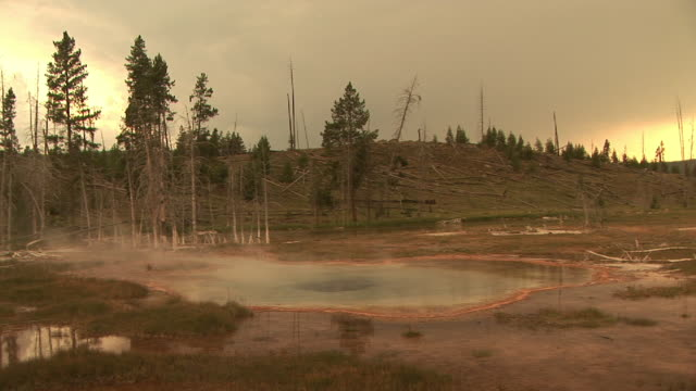 stockvideo's en b-roll-footage met ms, geyser pool, upper geyser basin, yellowstone national park, wyoming, usa - sepiakleurig
