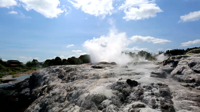 geysers in rotorua, new zealand - whakarewarewa stock videos and b-roll footage