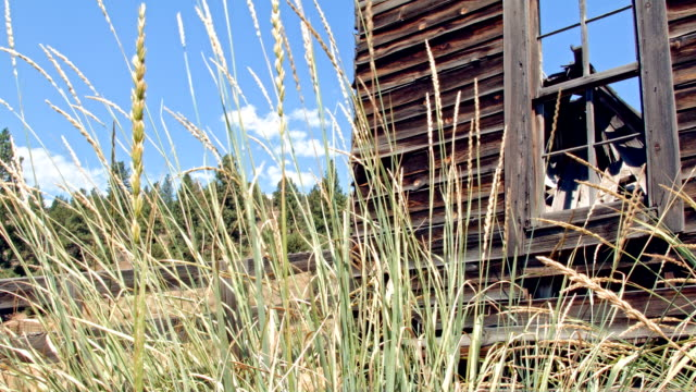 ghost town gold mine oregon abandoned homestead - gold mine stock videos and b-roll footage