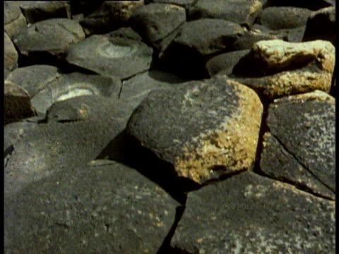 vídeos de stock, filmes e b-roll de giant causeway hexagon shaped rocks tilt up to hundreds of hexagon rocks up to the horizon - província de ulster