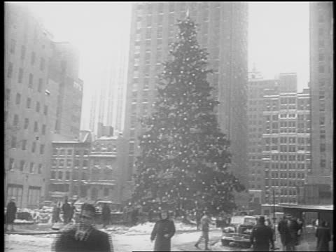 vídeos de stock, filmes e b-roll de b/w 1948 giant christmas tree people on snowy street / buildings in background / nyc / newsreel - pinaceae
