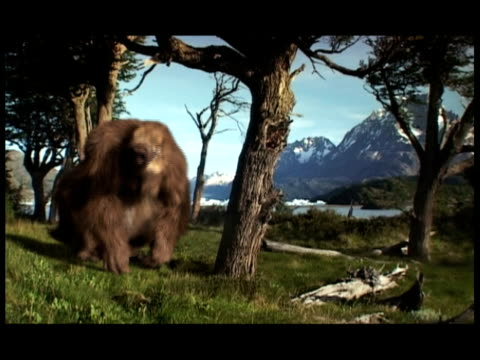 a giant ground sloth walks in a prehistoric forest and begins eating vegetation. - televisione a ultra alta definizione video stock e b–roll