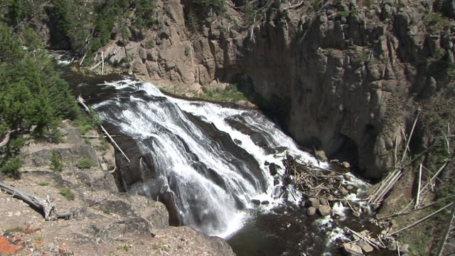 ms, gibbon falls, yellowstone national park, wyoming, usa - stationary process plate stock videos & royalty-free footage