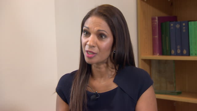 gina miller saying that she expected other people to stand up with her about the article 50 court case but nobody did - article stock videos and b-roll footage