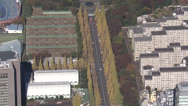 aerial, gingko avenue at jingu gaien, tokyo, japan - boulevard stock videos & royalty-free footage