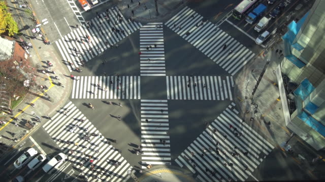 Ginza crossing top view- Slow motion