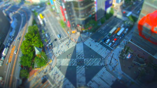 ginza pedestrian crossing in tokyo / tilt-shift - creativity stock videos & royalty-free footage
