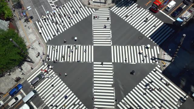 vídeos de stock e filmes b-roll de ginza pedestrian crossing in tokyo - ginza