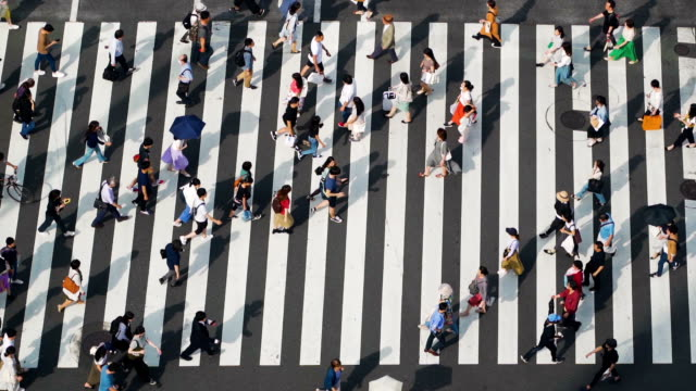 ginza zebra crossing, japan - footbridge stock videos & royalty-free footage