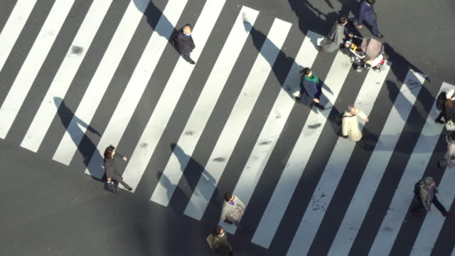 ginza zebra crossing - zebra crossing stock videos and b-roll footage