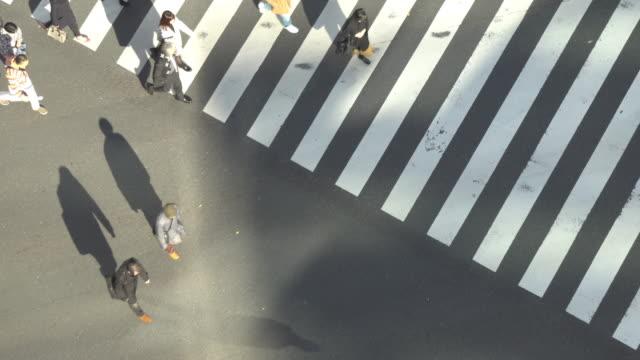 ginza zebra crossing - zebra crossing stock videos & royalty-free footage
