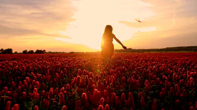 slo mo girl among flowers in the sunset - sundress stock videos & royalty-free footage