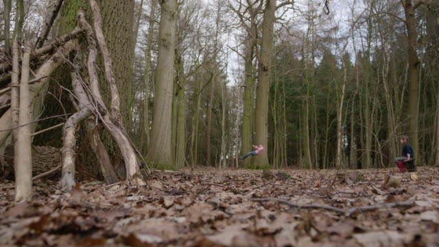 girl and boy alone in forest - rope swing stock videos & royalty-free footage