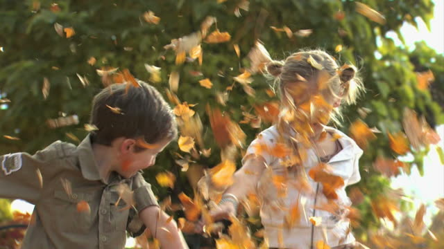 girl and boy playing in fallen leaves - see other clips from this shoot 1165 stock videos & royalty-free footage