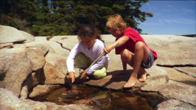 vídeos de stock e filmes b-roll de sm ws girl and boy walking on rocks and sitting down by tide pool, then girl picks crab from water and teases boy / vinalhaven, maine, usa - sentar se