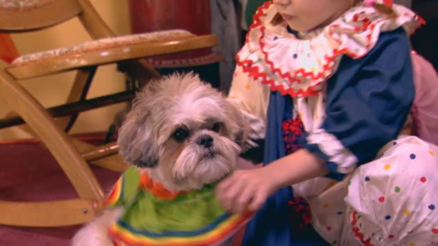 vidéos et rushes de girl and dog in costumes, hug - habillement
