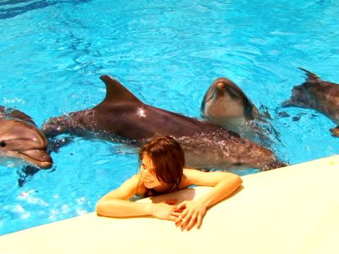 mädchen and dolphin - kleine gruppe von tieren stock-videos und b-roll-filmmaterial